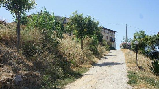 Agriturismo Cambuca: Trazzera