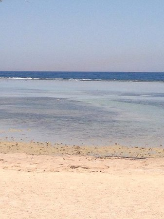 TUI Magic Life Sharm el Sheikh: Long, warm shallow water for snorkelling