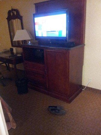 Best Western Plus Humboldt Bay Inn: Desk and TV