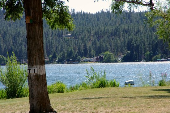 Willow Bay RV Resort & Marina : Pretty much all sites have water views.