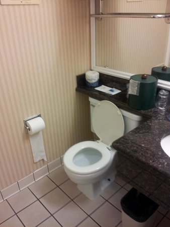 Best Western Plus Humboldt Bay Inn: bathroom