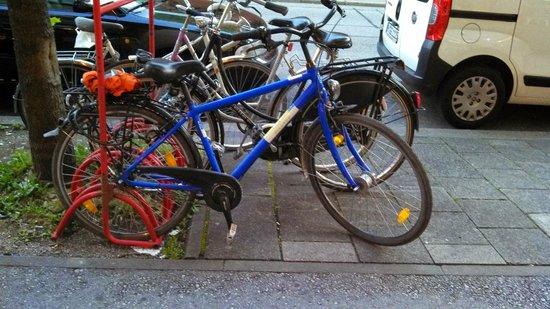 Radius Tours: Typical Radius Rental Bike