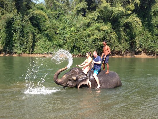 Tour with Tong: Elephant bath!