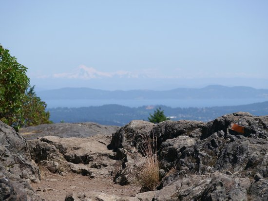 Goldstream Provincial Park: Mt Baker from the Top of Mt. Finlayson