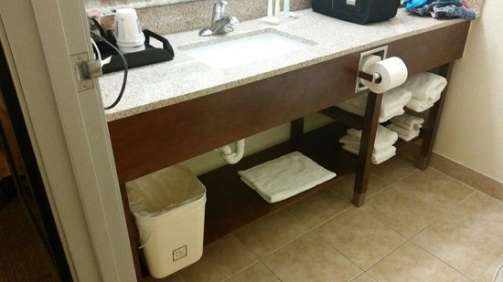 Comfort Inn: Nice spacious bathroom!