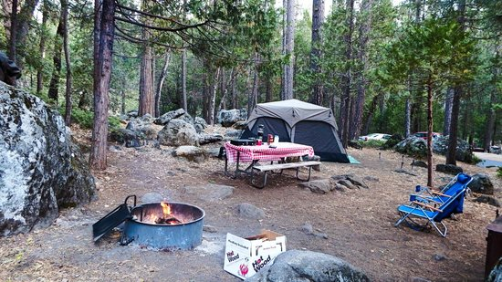 Site 44 picture of wawona campground yosemite national for Yosemite park camping cabins
