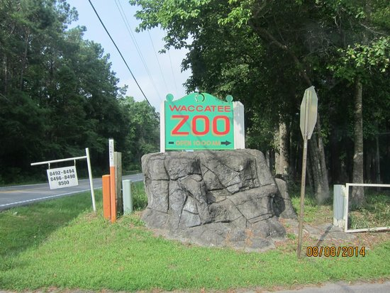 road sign - Picture of Waccatee Zoo, Myrtle Beach ... Zoo Road Sign