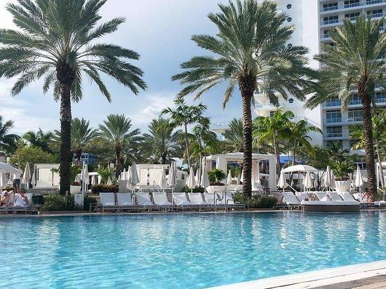 Fontainebleau Miami Beach : Pool