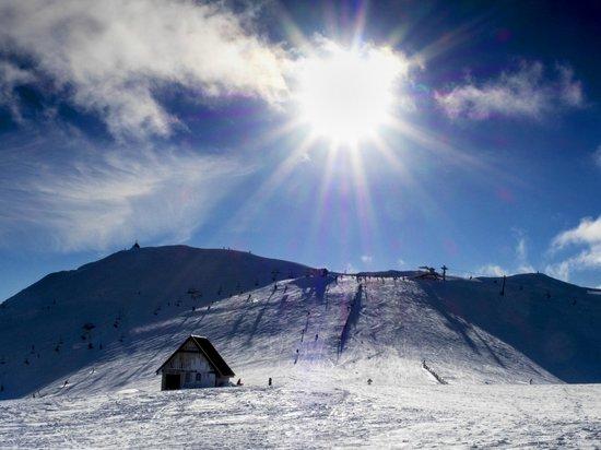 Mt Buller: Summit