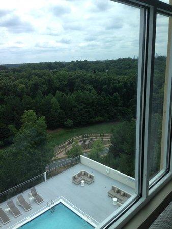 Hyatt Regency Atlanta Perimeter at Villa Christina: View