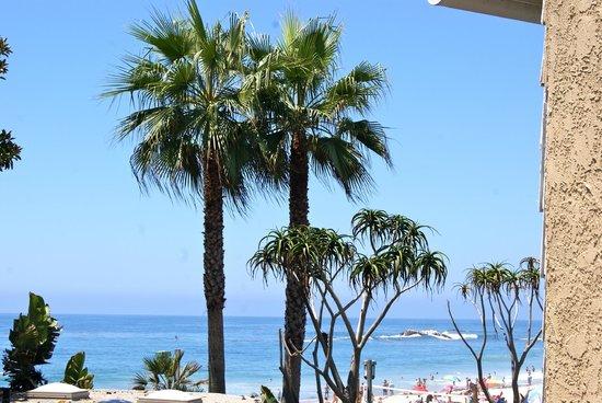 Balboa Bay Resort: View from C'est La Vie in Laguna upstairs