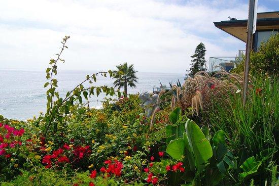 Balboa Bay Resort: Laguna Overlook
