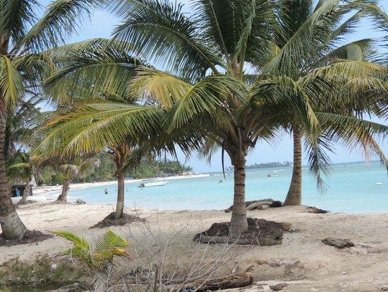 Cocoplum Beach Hotel: praia