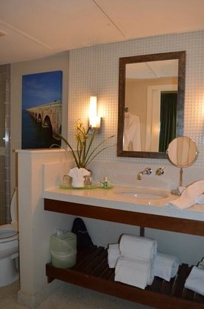 Orchid Key Inn: the bathroom