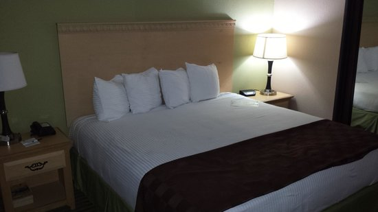 Best Western Galleria Inn & Suites : BED