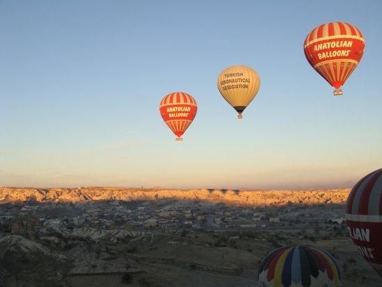 Goreme Balloons: pretty balloons in a neat row