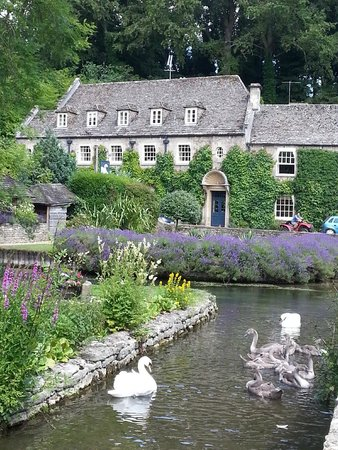 Lion Tours: Bibury