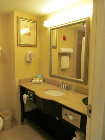 Holiday Inn Express Hotel & Suites Columbus - Fort Benning: Bathroom