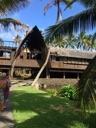 Coco Palms Tours & Tee's - Day Tours