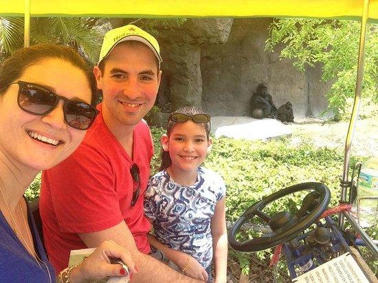 Zoo Miami: Pedalando no carrinho