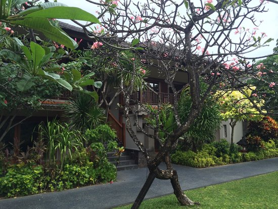 Padma Resort Legian : our chalet - missing it already