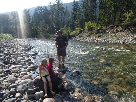 Shuswap Lake Provincial Park : Great hike along Scotch Creek, enter at white bridge