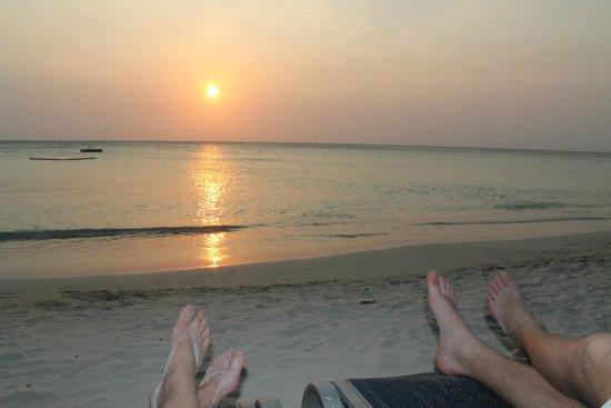 Bananarama Beach and Dive Resort: view of the beach