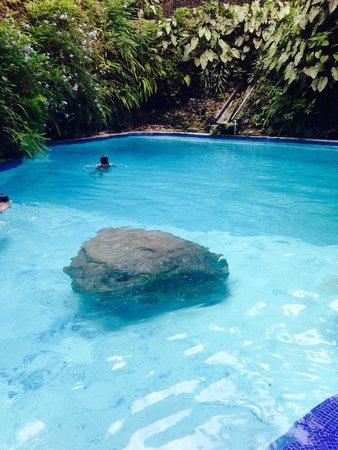 Hotel Jacarandas La Poza