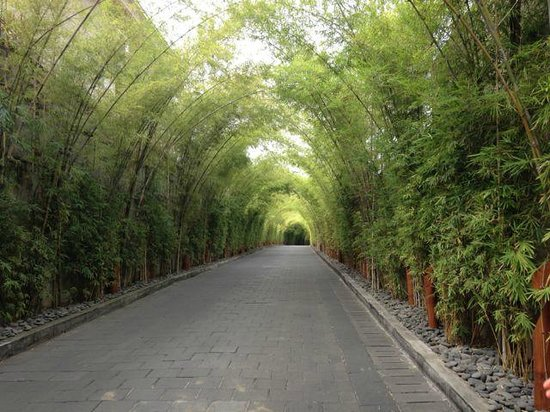 W Retreat & Spa Bali - Seminyak: Road into the W!