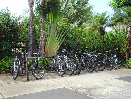 Maui Coast Hotel: Parc de vélo