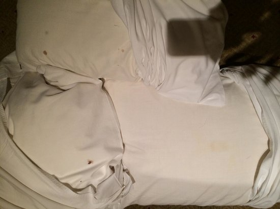 Clarion Hotel Tianjin: stained pillows with hair