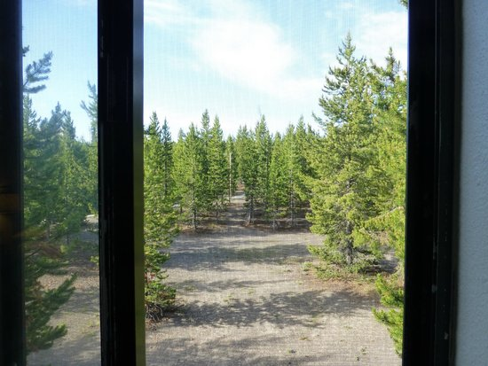 Grant Village Lodge : The view out our window