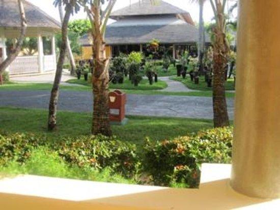 Iberostar Bavaro Suites: Small garden and gazebo library outside our patio