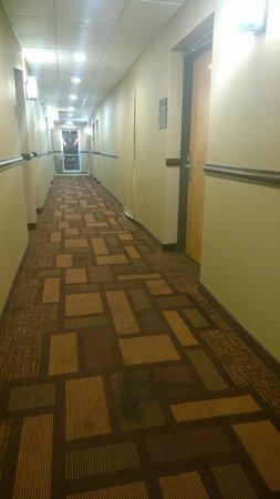Comfort Inn: Wall damage in hallway