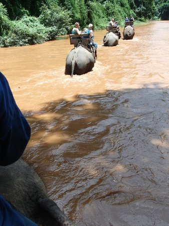 The Elephant Training Center Chiang Dao: On the trip