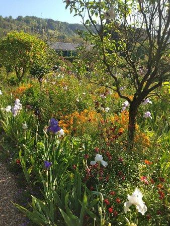 Maison et jardins de Claude Monet : Monet's beautiful gardens in Giverny, France