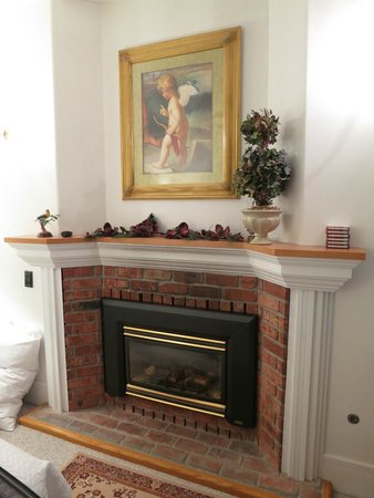 Otters Pond Bed and Breakfast: Fireplace in Goldfinch Room