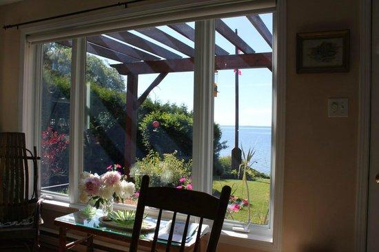Howe Island B&B: from the main house