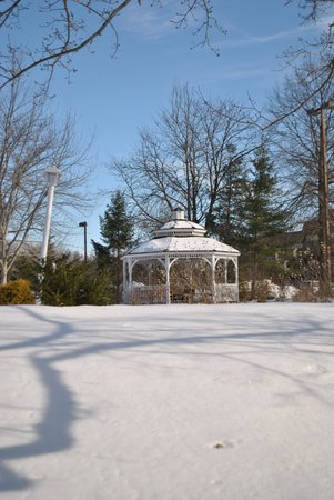 Hilton Parsippany: A lovely gazebo graces the grounds