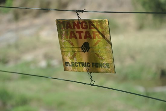 Mara Intrepids Club: The Electric fence around the resort