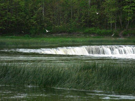 Venta Waterfall: Если присмотреться - видно летающих рыб над водопадом, они сверкают на солнце
