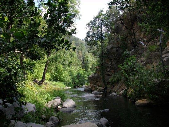 The Butterfly Garden Inn: Creek