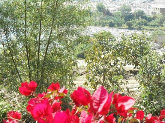 La Confianza Hotel - Lunahuana: Rodeado de naturaleza