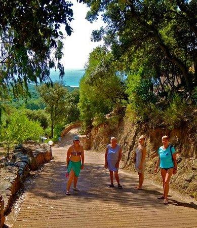 Residence Belvedere de Palombaggia : Palombaggia