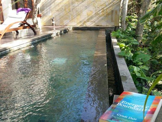Gending Kedis Villas & Spa Estate : Private pool