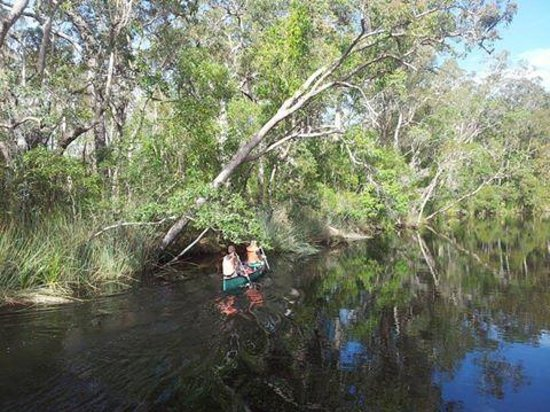 The Discovery Group - Day Tours: canoeing