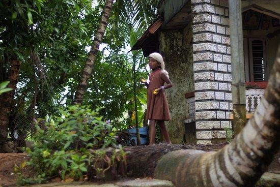 Kerala Backwaters: petite fille dans l'ocean de verdure des backwatters