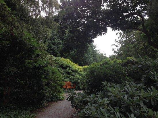 Royal Botanic Garden Edinburgh : hidden place