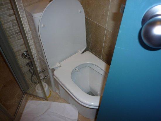 Feronya Hotel: Very small bathroom