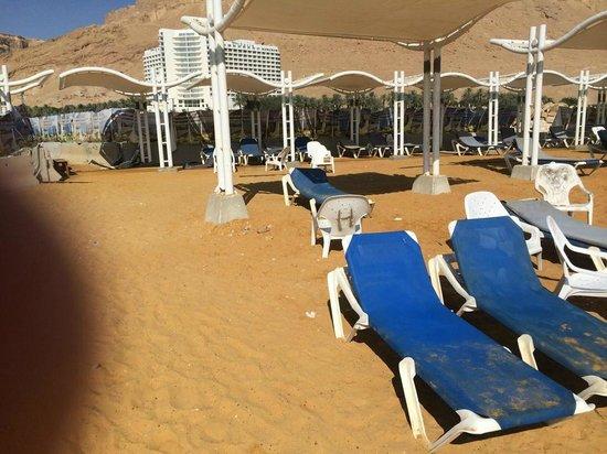 Leonardo Inn Hotel Dead Sea: beach
